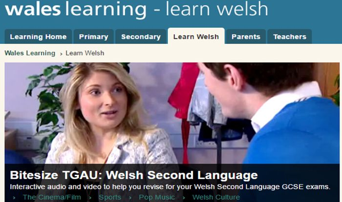 How to Learn Welsh: 7 Steps (with Pictures) - wikiHow